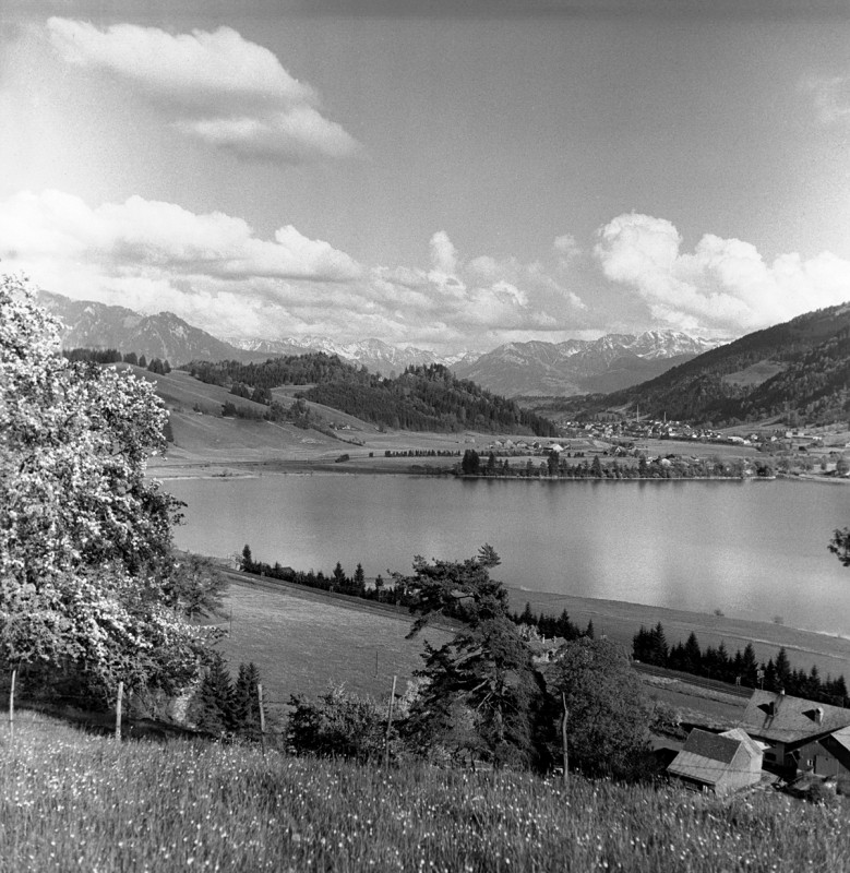 Landschaft am Alpsee, 1954