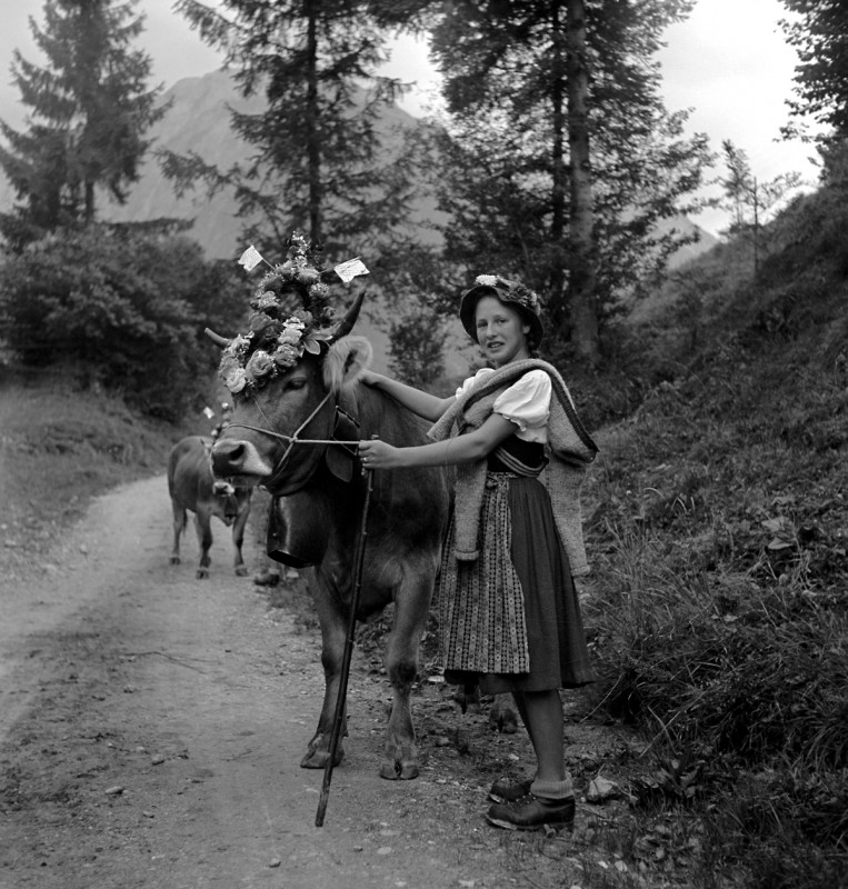 Viehscheid mit schöner Hirtin, 1956
