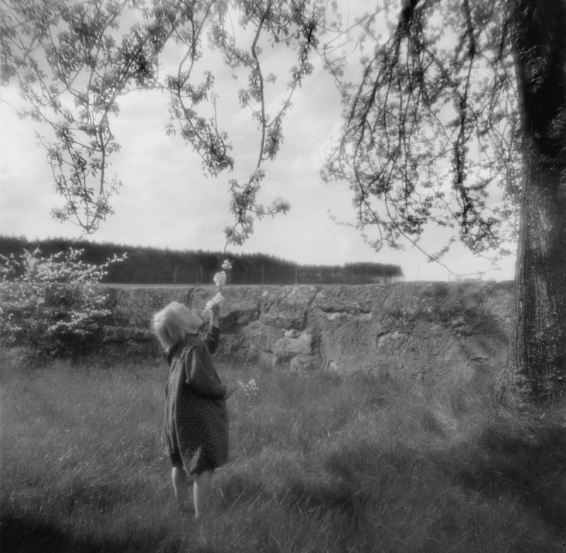 Kinder und Blüten, 1934