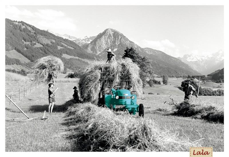 """Postkarte """"Heuernte mit Traktor"""""""