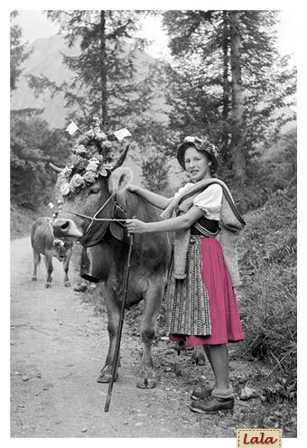 "Postkarte ""Viehscheid-Hirtin"""