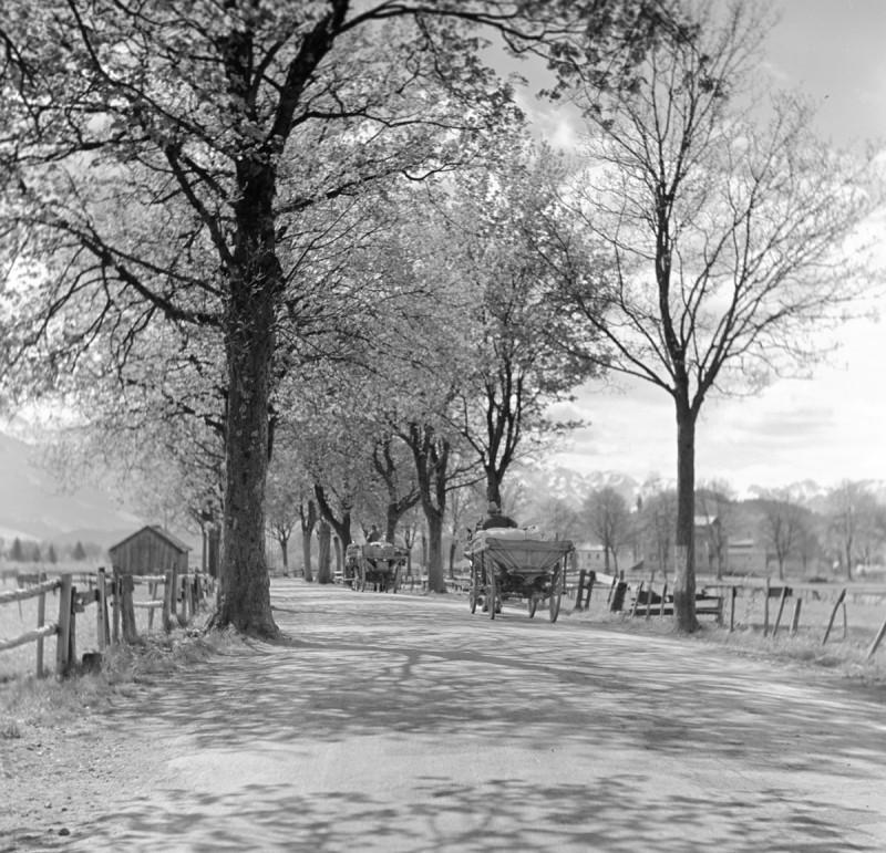 Landpartie, 1940