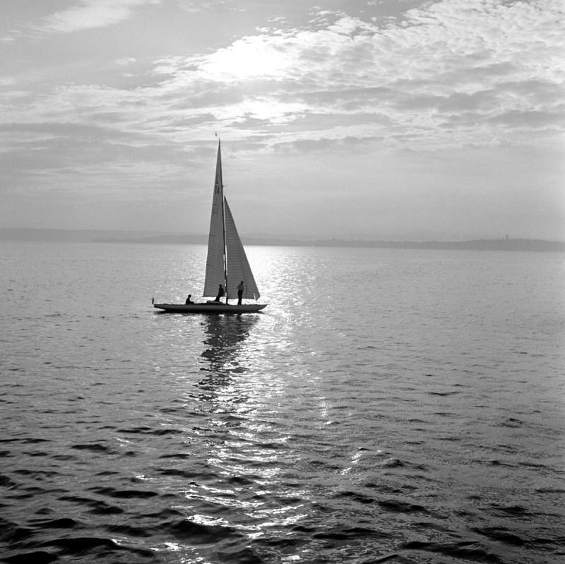 Stimmung am Bodensee, 1953