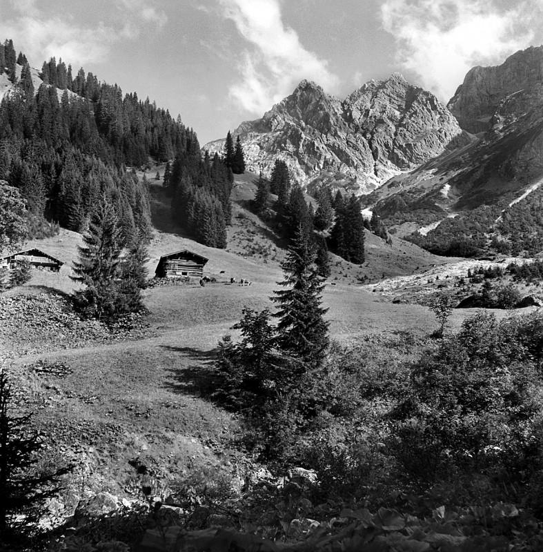 Einsame Hütte in den Bergen, 1954