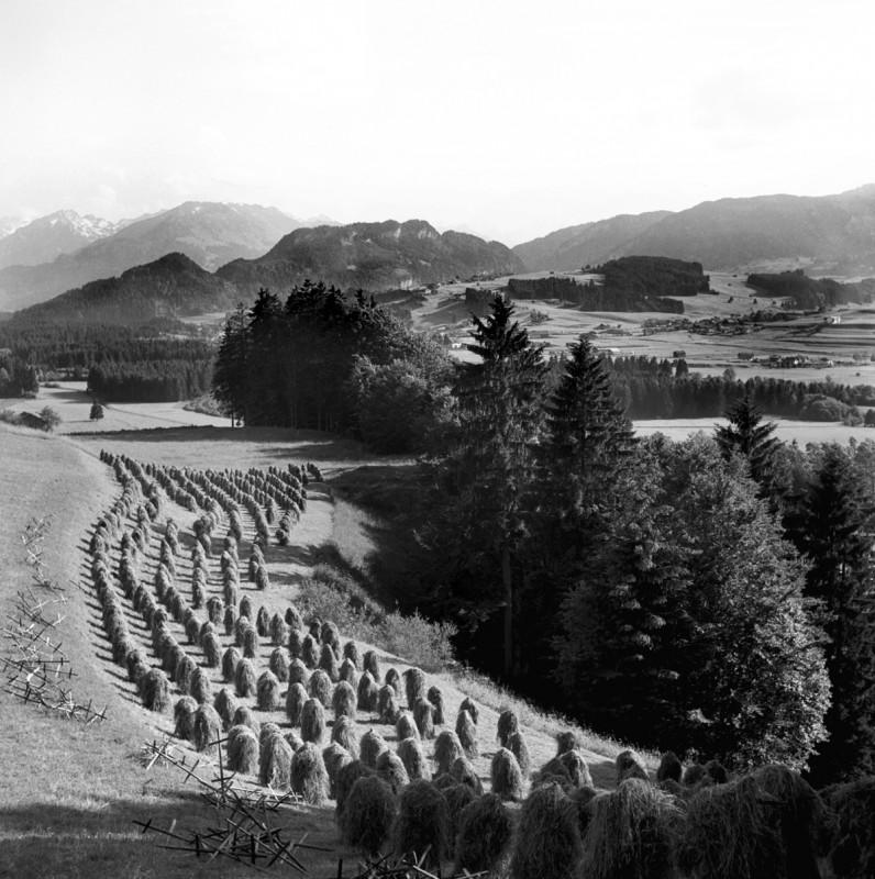 Huinzenlandschaft, 1956