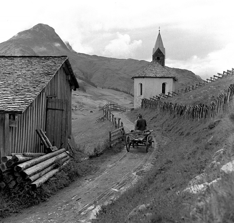 Pferdefuhrwerk in den Bergen